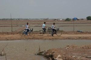 Vinh Chau Artemia ponds