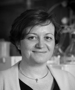 Prof. Marjan De Mey