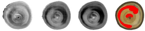 Near-infrared (NIR) hyperspectral imaging