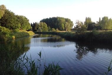 Waterkwaliteit Vlaanderen 1444x963