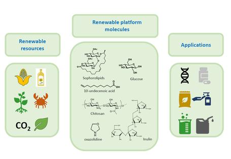 renewable platform molecules