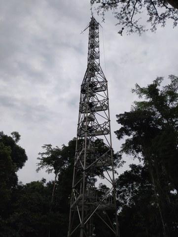 DRC16.jpg