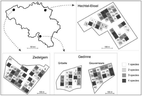 FORBIO-plantations-map.jpg