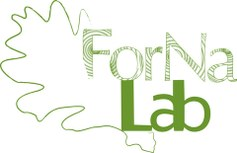 Forest & Nature Lab
