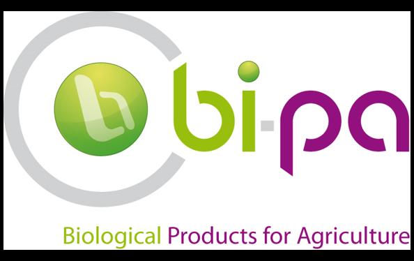 bipa72