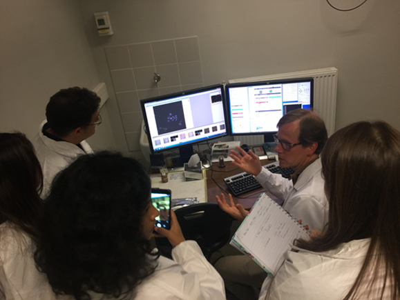 Demonstration of cellular uptake of fluorescently labelled dsRNA using confocal microscopy