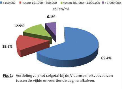 Verdeling van het celgetal bij de Vlaamse melkveevaarzen tussen de 5de en 14de dag na afkalven