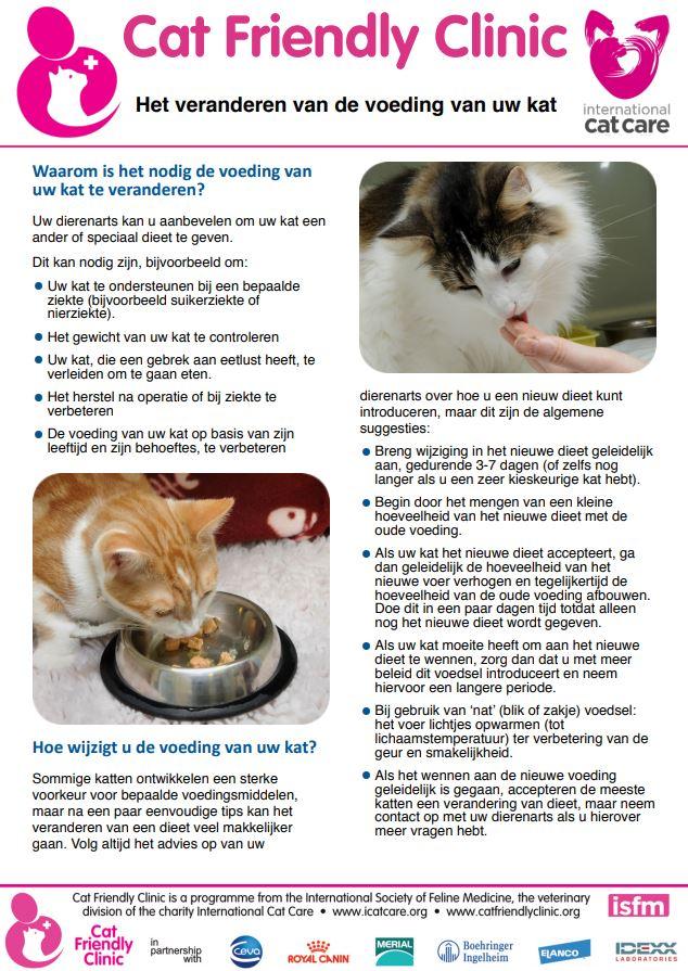 tips voor katten 19