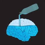 Fluid mechanics of the Brain and Spinal Cord