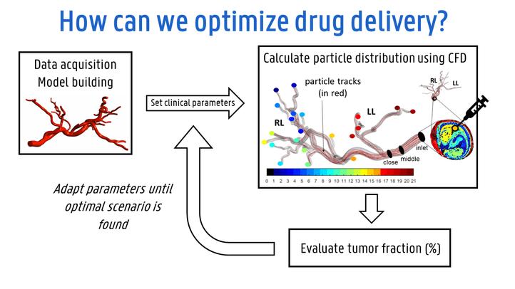 patient-specific-optimization-framework.png