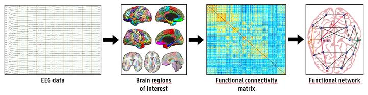 eeg-based-brain-network-analysis.png