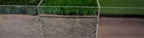 Artificial turf with draining subbase