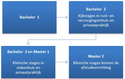 Stages Revaki