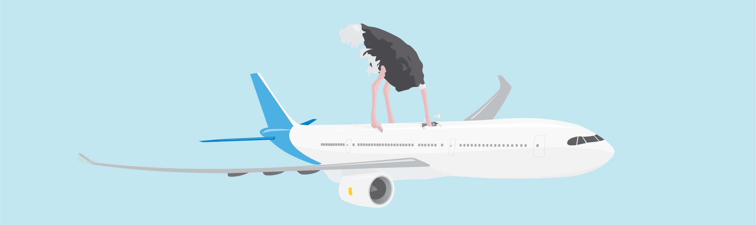 vliegtuigreis