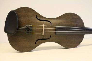 Vlasvezel viool (c) Tim Duerinck