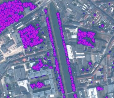 Luchtfoto van de buurt van de Coupure. Alle geïdentificeerde bomen groter dan 4 meter zijn aangeduid in het paars. Zowel de bomen op openbaar domein (langs de Coupure en in de Groene Vallei links bovenaan) als bomen op privédomein zijn zichtbaar.