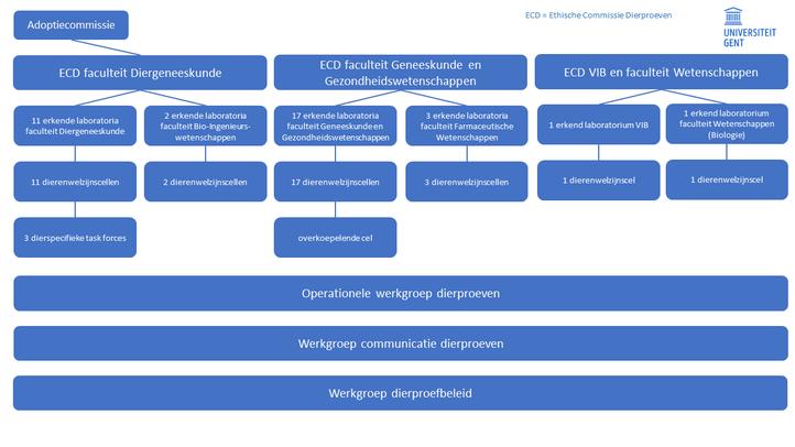 Diagram UGent-organen dierproeven