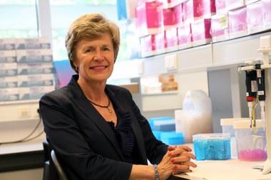 Anne De Paepe