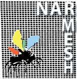 Marco Caracciolo - NARMESH