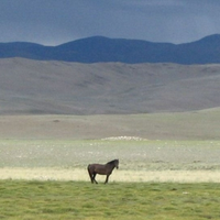 Yustyd valley, Altay Mountains