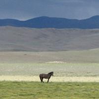 Yustyd vallei, Altaj-gebergte