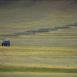 Een rij Vroege-IJzertijd grafheuvels in de Yustyd vallei (Altaj)