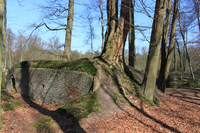A preserved German pillbox in the Mastenbos (Kapellen)