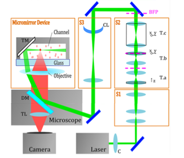 Use of a micromirror device in an optical setup for Light Sheet Microscopy.