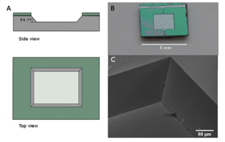 Microfabricated tilted mirror for Light Sheet Microscopy.