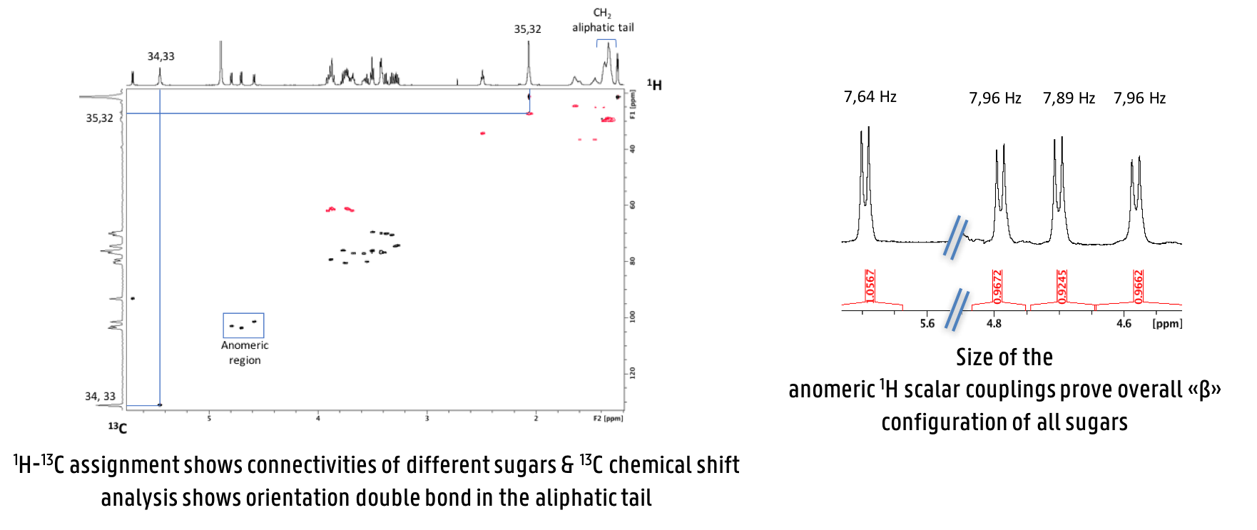 NMR data used in the analysis of the bolaform surfactant