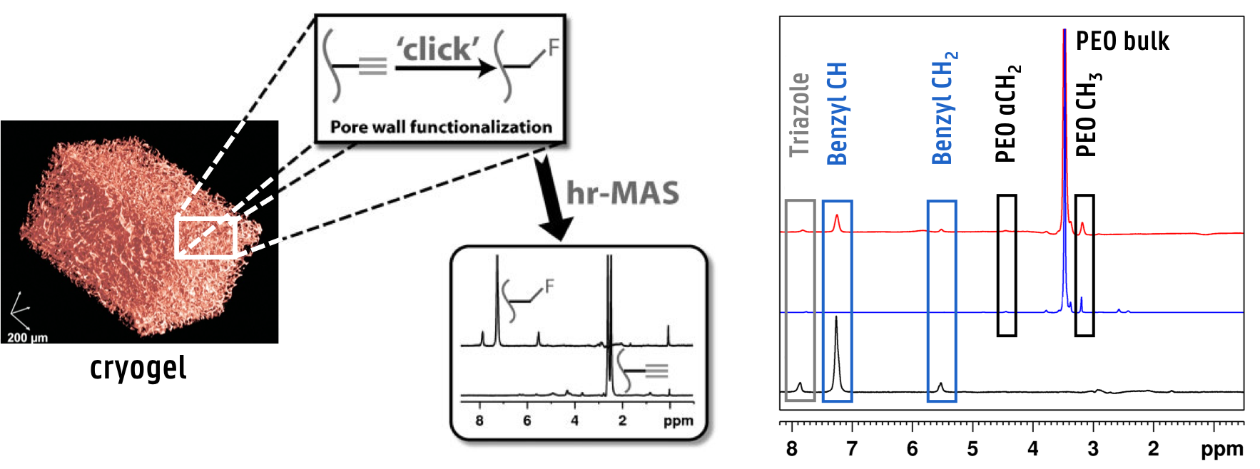 Cryogel functionalization studied by 1D 1H hr-MAS NMR spectra