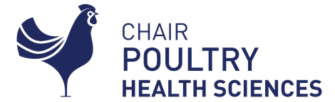 Logo poultry chair