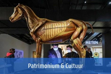 Patrimonium & Cultuur