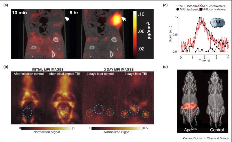 Modellering van magnetische dynamica