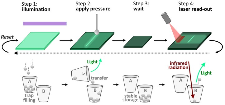In the first step, the luminescent material is illuminated with UV or blue light. Mainly traps of type A are filled with electrons. In step 2, the materials light up where pressure is applied. In addition, part of the trapped electrons are transferred from trap A to trap B. Trap B is very stable keeping the electrons stored for up to three days (step 3). In step 4, the material is scanned with an infrared laser beam. The areas where pressure had been previously applied, light up in green once more. When the material is illuminated again, the whole process can be repeated. From the Eurekalert news release on Petit, R.R., Michels, S.E., Feng, A. et al. Adding memory to pressure-sensitive phosphors. Light Sci Appl 8, 124 (2019).