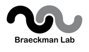 logo Braeckman lab