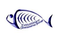 logo Evolutionary Developmental Biology
