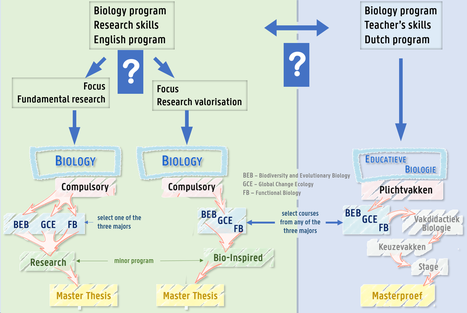 keuzestructuur Master Biologie