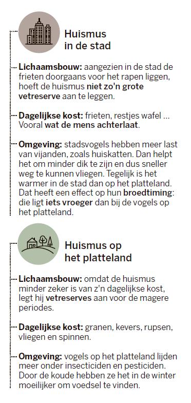 © De Standaard