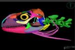 3D_dierkunde_1