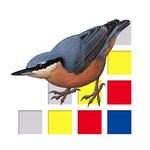 vogels_van_europa.png