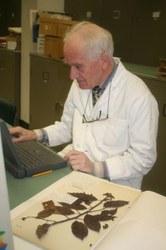 Karel Otten in het herbarium