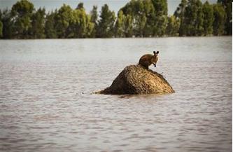 Flooding in Australia, 2011